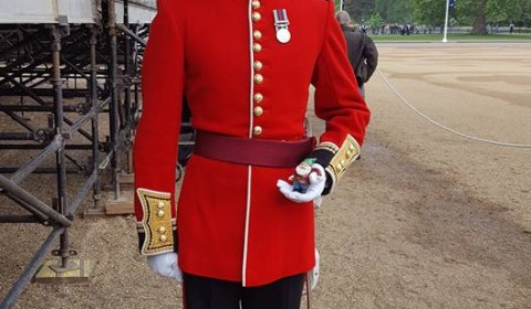 Guardsman Trooping of the Colour